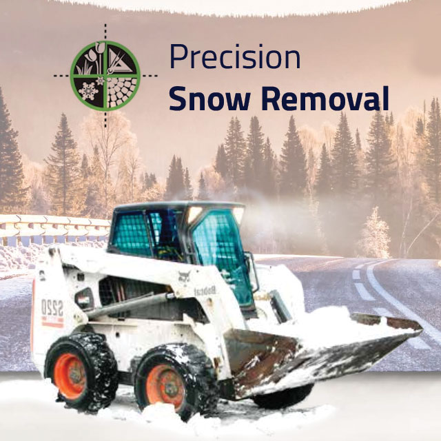 Precision Snow Removal web design